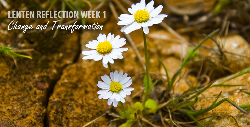 Lent Week 1 - Change and Transformation