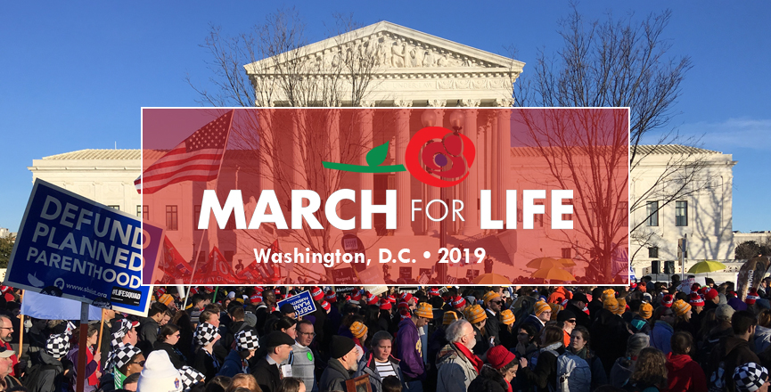 National March for Life 2019