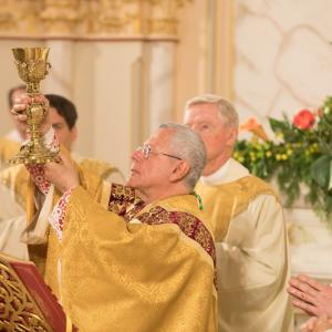 Ordination 5