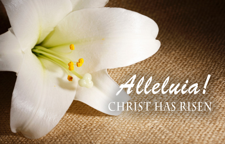 Alleluia! Christ Has Risen